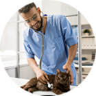 Veterinarians_rounded